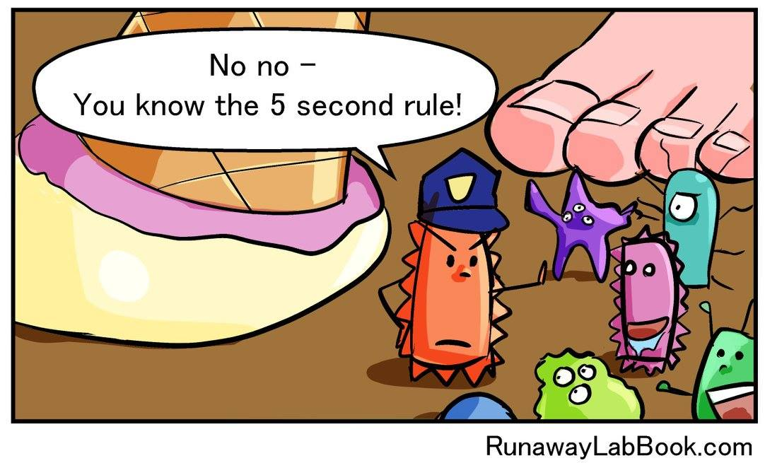 5 Second Rule The Runaway Lab Book